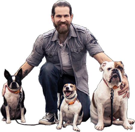 Simpawtico Dog Training Home Simpawtico Dog Training
